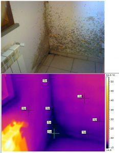 Analisi-cause-umidità-muffe